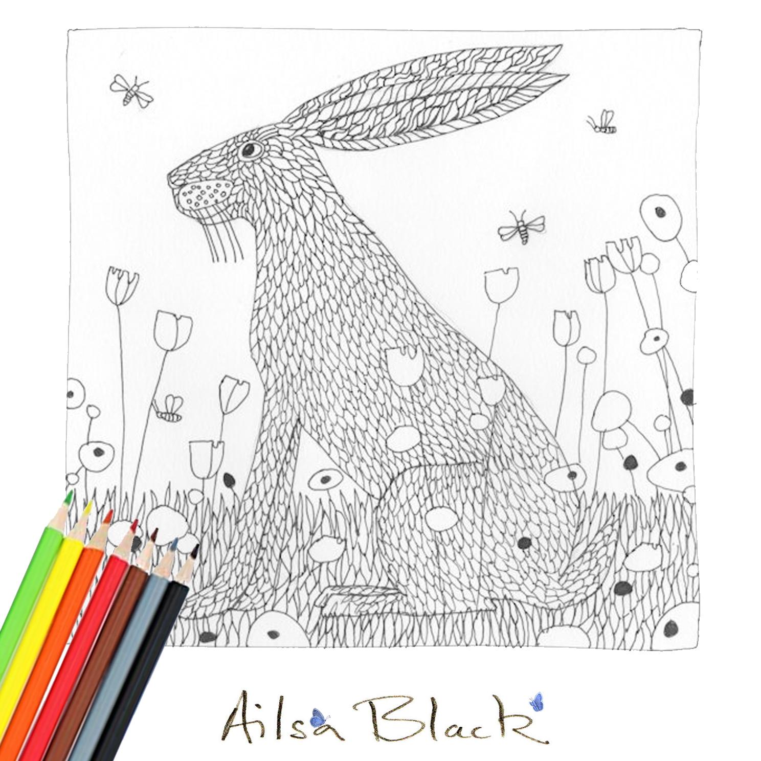 AILSA-BLACK_DAY9